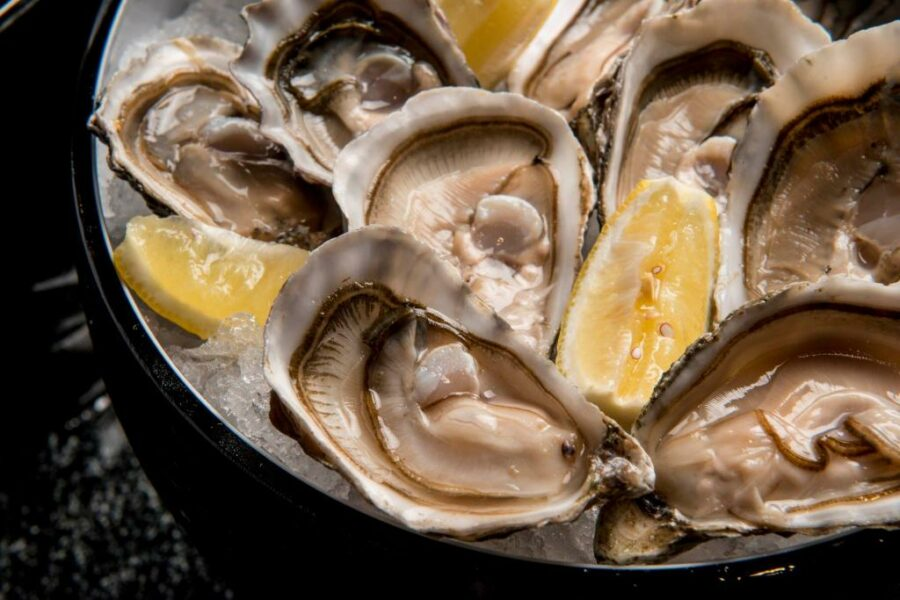 A Bowl Of Oysters  Description Automatically Generated With Low Confidence